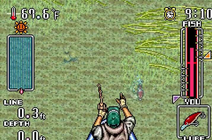 Gameboy Advance Fishing Games List - FGindex