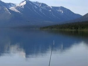 Reel Fishing Anglers Dream Wii Screen Capture